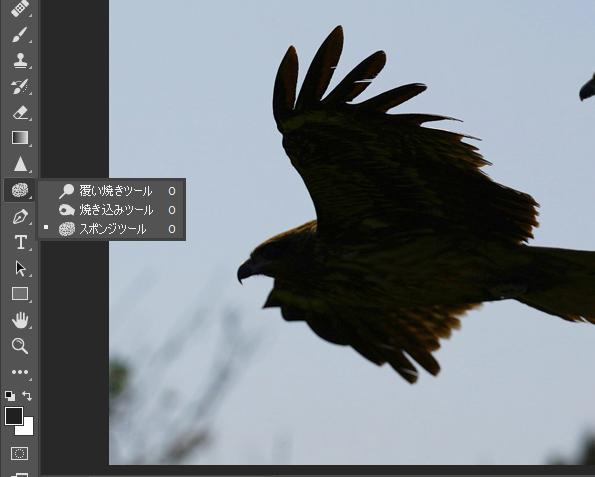 Adobe Photoshopの使い方(覆い焼き・焼き込み・スポンジ)