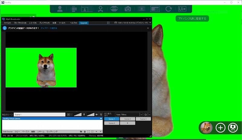 XSplit BroadcasterでFaceRigを表示