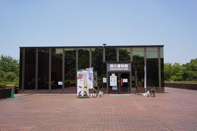 馬の博物館の写真